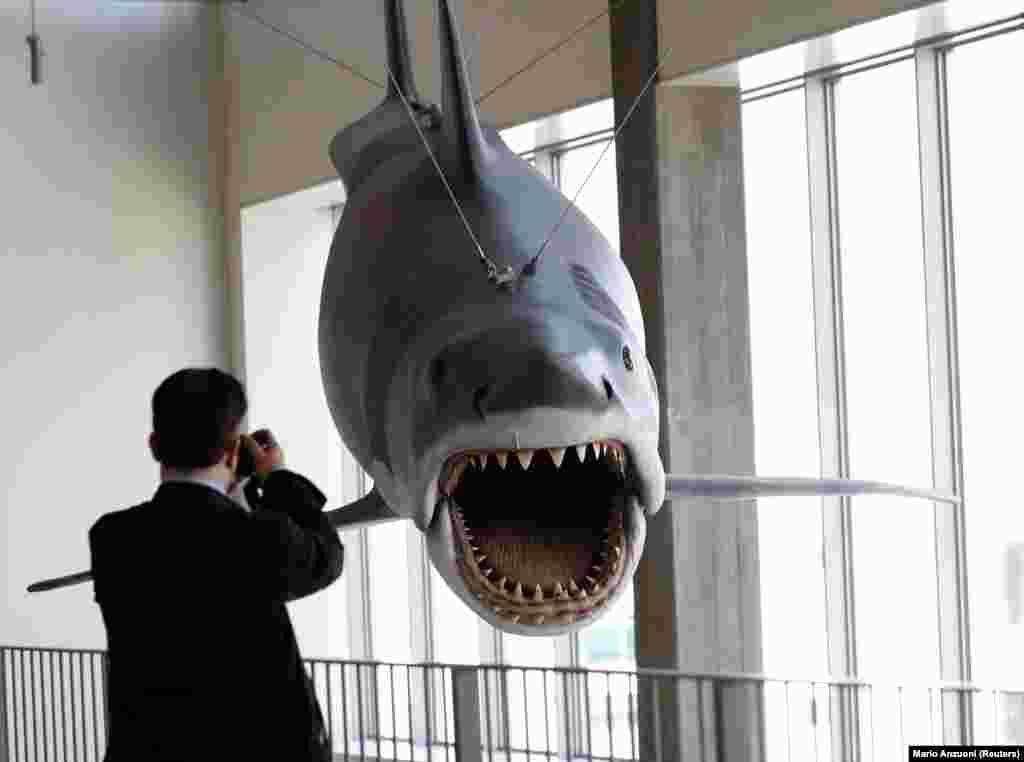 A Cápa forgatásáról egyetlen fennmaradt ragadozó (persze nem igazi)