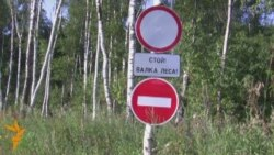 Приостановлена вырубка Химкинского леса