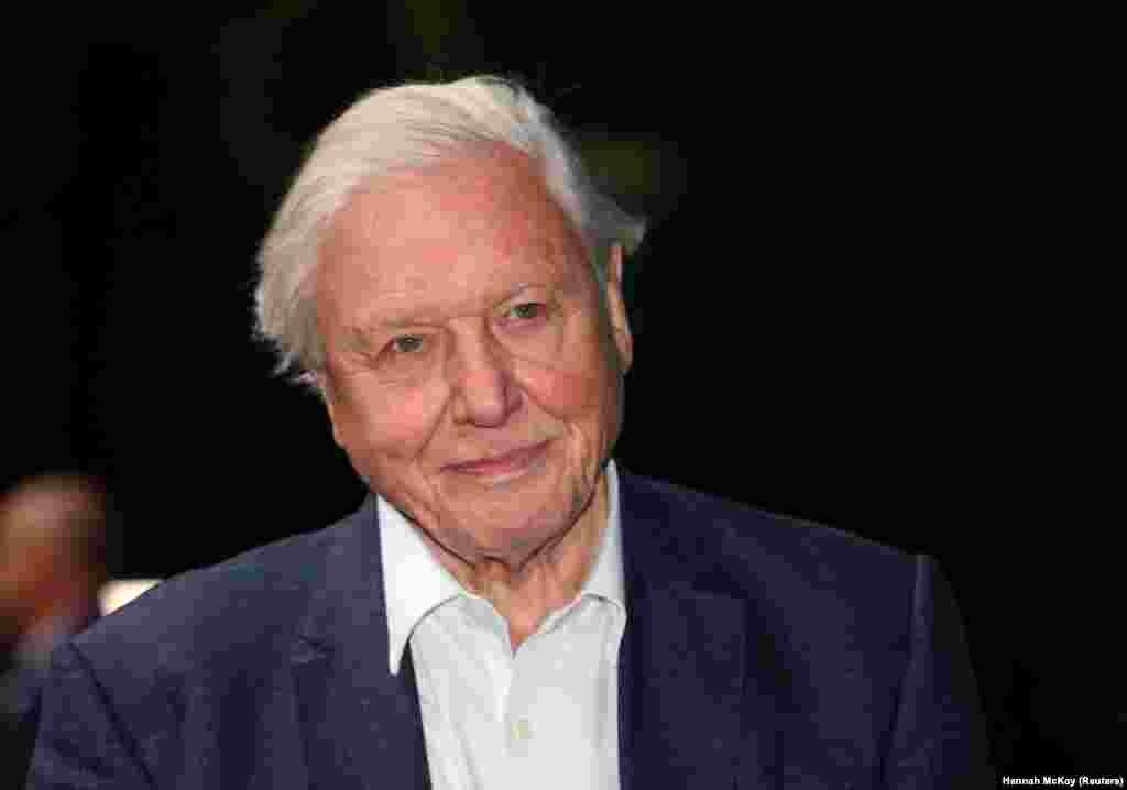 Természettudós, dokumentumfilmes, az ismeretterjesztő televízióműsorok egyik úttörője. Legújabb filmje 2020-ban jelent meg Egy élet a bolygónkon címmel. Sir David Attenborough munkáját 2009-ben ismerték el a díjjal társadalomtudomány kategóriában.