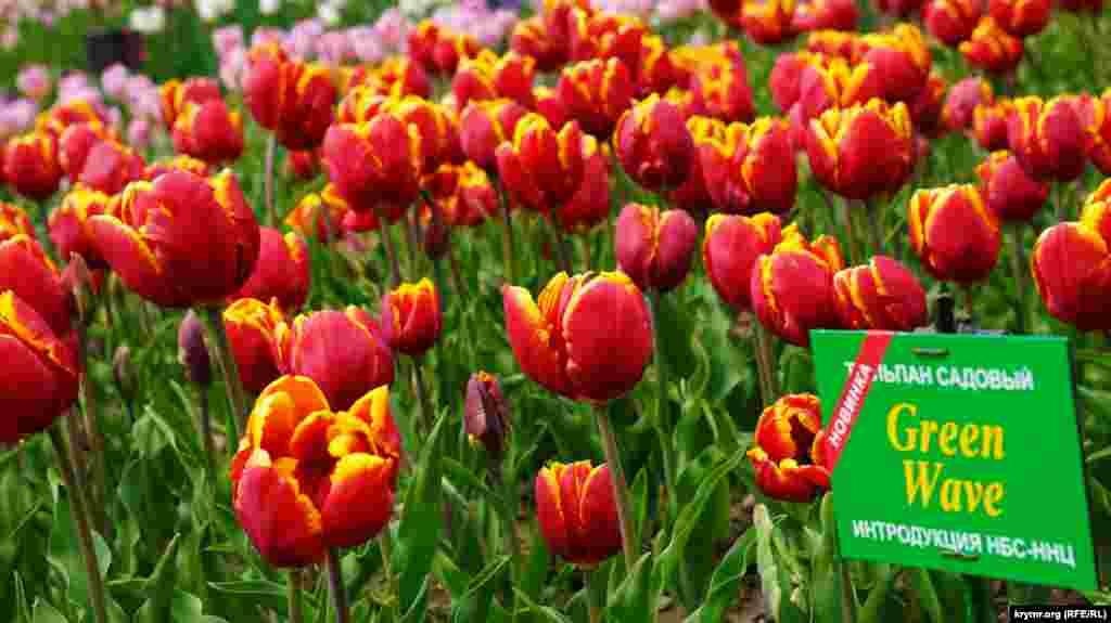 Сад был основан два века назад по указу российского императора Александра I.