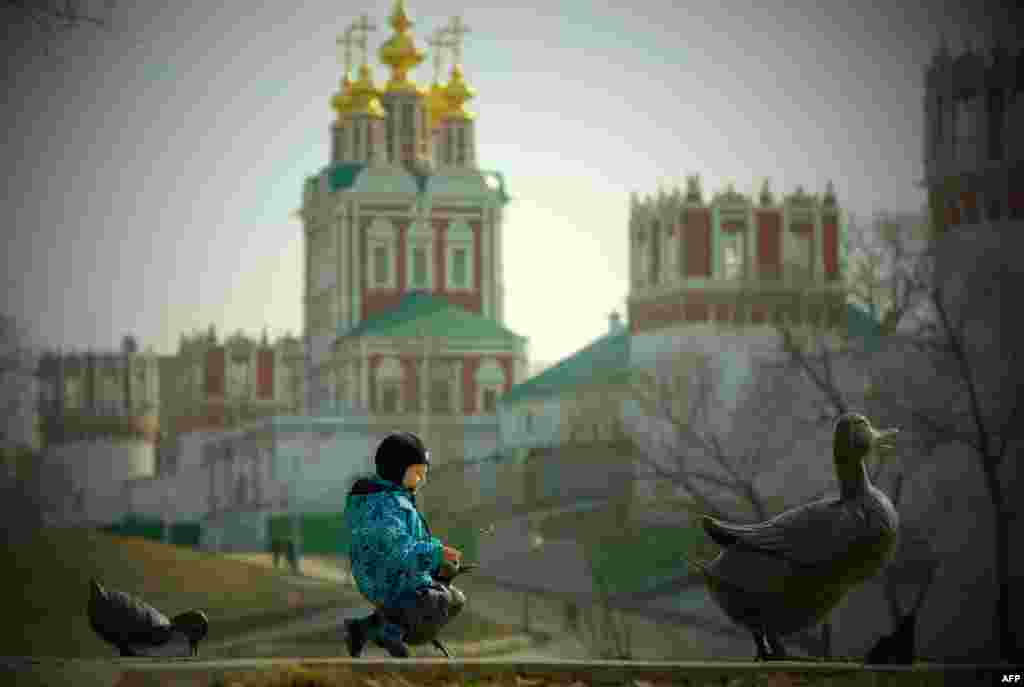 A boy plays on a sculpture of a duck and ducklings with Moscow's Novodevichy Convent seen in the background. (AFP/Yuri Kadobnov)