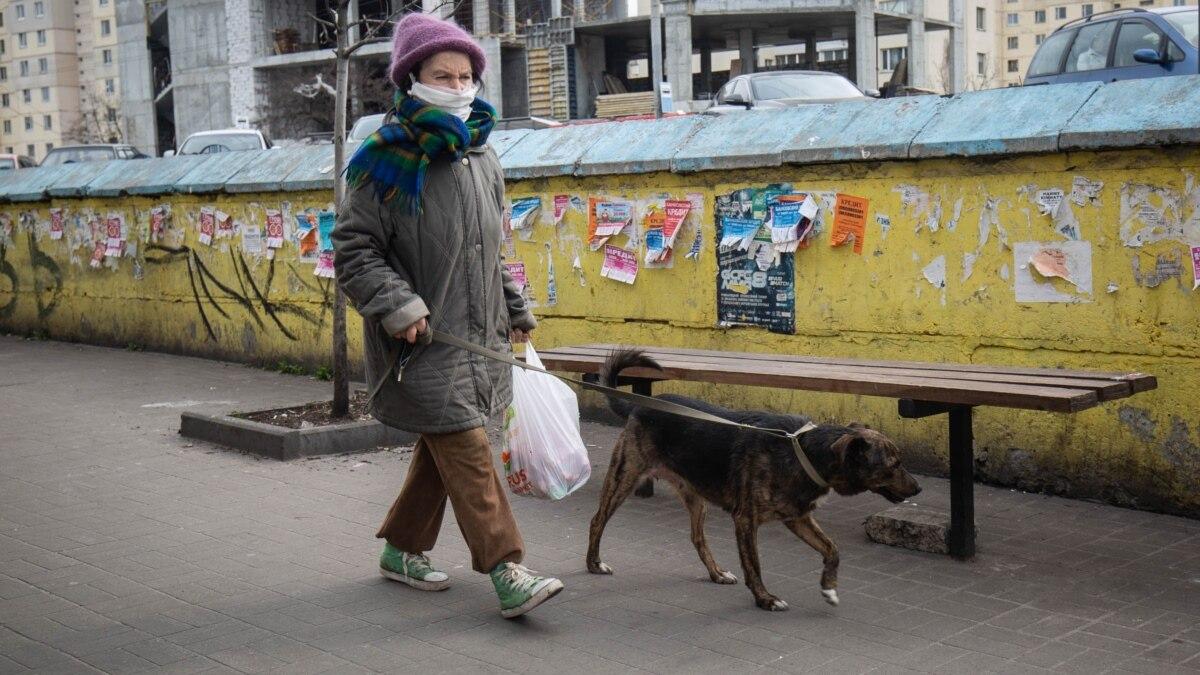 В масках и с собаками: новые правила посещения общественных мест от правительства