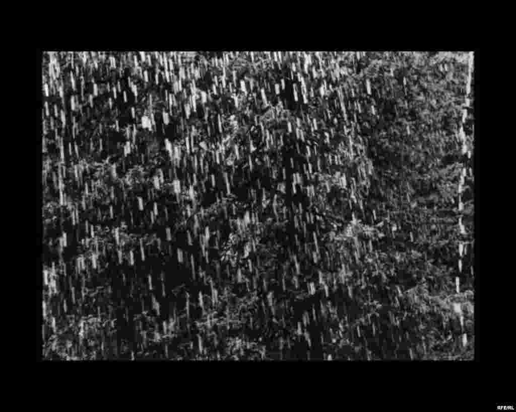 The Last Song Of A Glacier #19