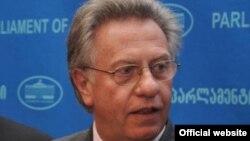 Глава Венецианской комиссии призвал парламентариев не торопиться, дождаться отчета и принять его во внимание