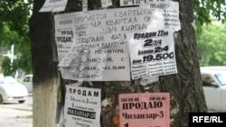 Toshkent ko'chalaridagi bugungi manzara.