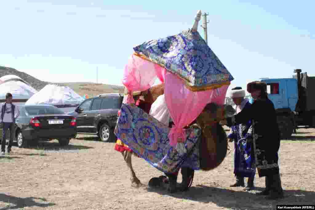 С верблюда, задействованного в постановке сцены кочевья, снимают декорации.