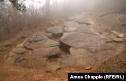 Район Височицы, где Османагич при раскопках в 2006 году нашел то, что он назвал «стенами пирамиды».