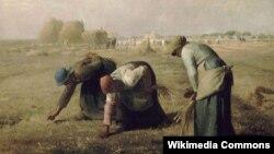 Жан Франсуа Міле, «Зьбіральніцы каласкоў» (1857)
