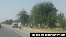 Работники бюджетных организаций занимаются уборкой территорий вдоль автомобильной дороги «Даштабад Заамин», 17 июля 2019 года.