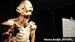 """Izložba """"Razotkrivanje tela"""" u Beogradu"""