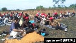 Pamje e migrantëve në Horgosh të Serbisë që kërkojnë të hyjnë në Hungari