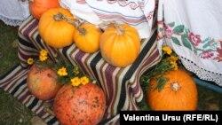 """La Lozova, la Festivalul """"Bostaniada"""""""