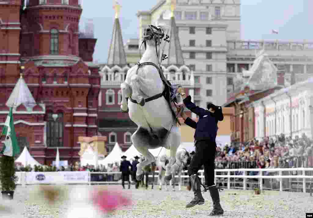 A member of the Spanish Royal Andalusian School of Equestrian Art performs during the International Military Music Festival on Moscow's Red Square. (epa/Maxim Shipenkov)