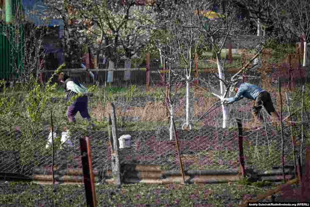 """But the RFE/RL photojournalist says that, while the virus is upending life in his hometown, many residents are """"reverting to a traditional survival tactic in times of crisis."""" They are """"planting potatoes."""""""