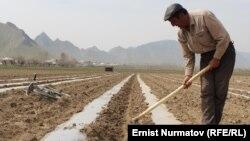 Ежегодно весной в Кыргызстане наблюдается сезонная миграция из Узбекистана и Таджикистана для работы в сельском хозяйстве и строительстве.