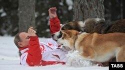 Путин на прогулке с собаками (архивное фото)