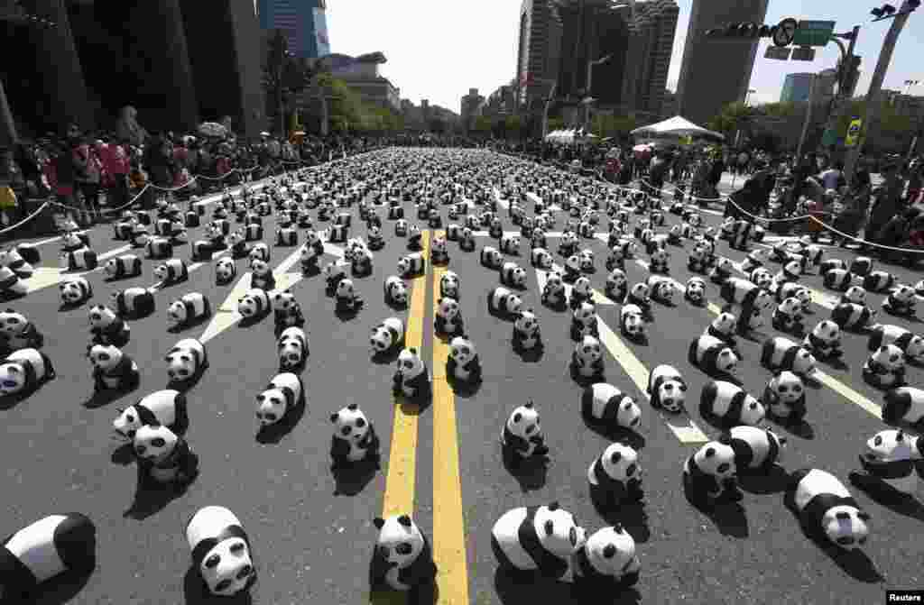 "Papier mache pandas created by French Paolo Grangeon are seen displayed outside the Taipei City Hall in Taiwan as part of an exhibition called ""Pandas on Tour"" on February 28. (Reuters/Patrick Lin)"