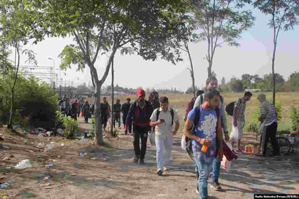 Мигранты идут через македонско-сербскую границу. 17 сентября 2015 года.