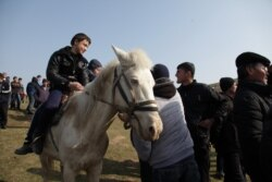 Ўзбекистон Россия туристлари учун Туркия ва Миср ўрнини боса оладими?