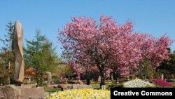 Ботанический сад Jesperhus – одна из датских достопримечательностей