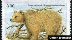Тяньшанский бурый медведь на почтовой марке.