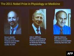 2011 елның Нобель медицина бүләге ияләре
