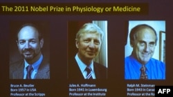 A graphic displayed at the Nobel Assembly at the Karolinska Institute in Stockholm shows the three winners on October 3.