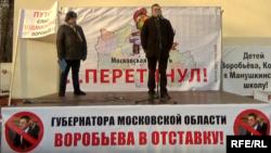 Митинг 20 ноября 2016 года в парке Сокольники в защиту местного самоуправления