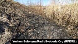 Спалена суха трава під Києвом, 9 квітня 2020 року