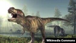Тираннозавр рекс, который жил в период мезозойской эры.