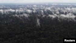 Amazon u plamenu i dimu