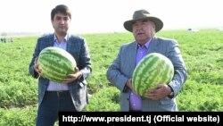 Президент Таджикистана Эмомали Рахмон (справа) и его сын Рустам