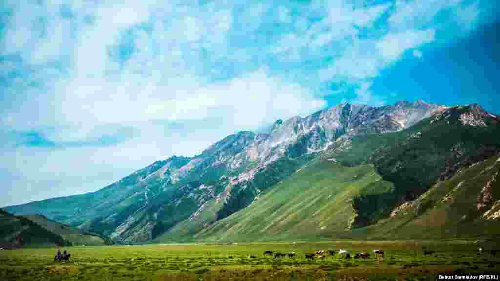 Қырғызстанның Ыстықкөл облысындағы Түрген шатқалы