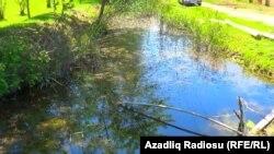 Saatlı rayonunun Dəllər kəndi, qrunt suları