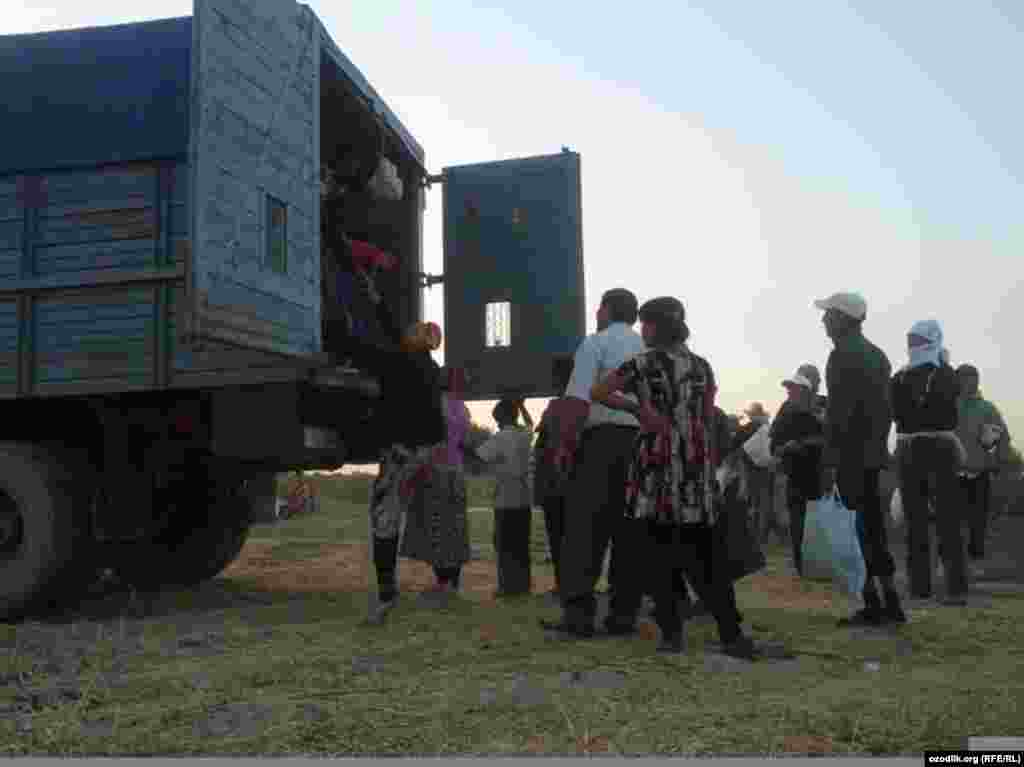 Officials in Jizzakh District have deployed trucks to transport people to the fields, saying that there are not enough buses.