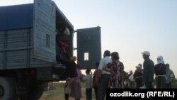 Студенты, направленные на сельхозработы на хлопковые поля в Джизакской области. 6 сентября 2012 года.