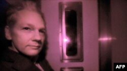 Основатель WikiLeaks Джулиан Эссанж, за которого мстили хакеры