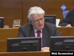 Radovan Karadžić na suđenju u Hagu, 07. ožujka 2012.