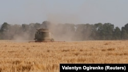 A combine harvester gathers barley in a field near the Ukrainian village of Zhovtneve.(file photo)