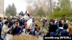 Студенты Самаркандского государственного университета возвращаются со сбора урожая хлопка, 2016 год.