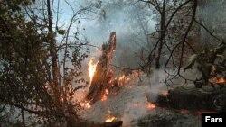 طی سالهای گذشته دهها مورد حریق در جنگلهای ایران اتفاق افتاده است.