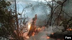 دولت یونان به دنبال گسترش آتش سوزی ها در این کشور حالت فوق العاده اعلام کرد