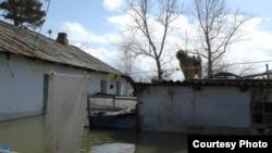 Қарағанды облысындағы су басқан ауыл. Көрнекі сурет