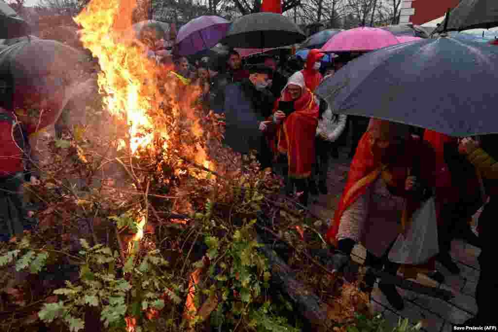 Черногорские верующие сжигают дубы в Цетине