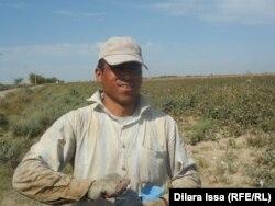Өзбек жігіті Еркінбек Нишонов келіншегі екеуі күніне 400 килограмм мақта теретінін айтады.