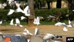"""Испания, парк """"Parque de los principes"""" в Севилье, излюбленное место отдыха пенсионеров."""