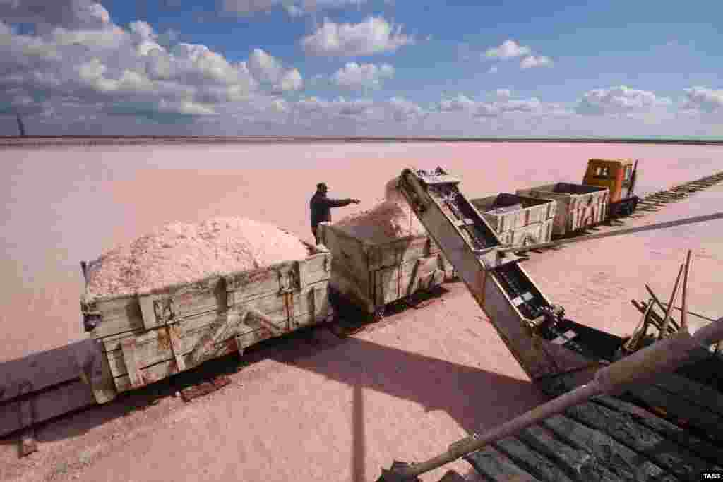 Wagons are filled with pink salt on the shores of Sasyk-Sivash Lake, near the city of Yevpatoria on Ukraine's Black Sea coast.
