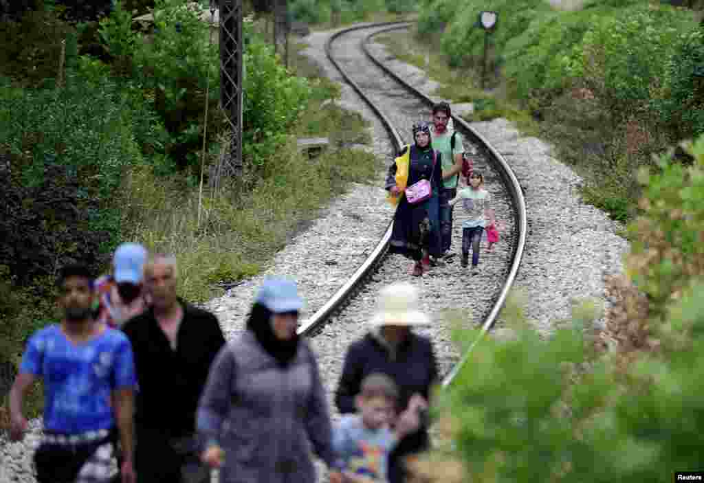 Migrants from Syria walk in Macedonia near the Greek border. (Reuters/Ognen Teofilovski)