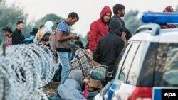 Мигранты и беженцы из зон конфликта на Ближнем Востоке и в Африке у сербской границы, 25 августа 2015 года.