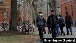 دانشگاه هاروارد اعلام کرده است که در ترم جدید تمام کلاسها آنلاین خواهد بود
